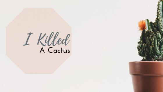 I Killed a Cactus
